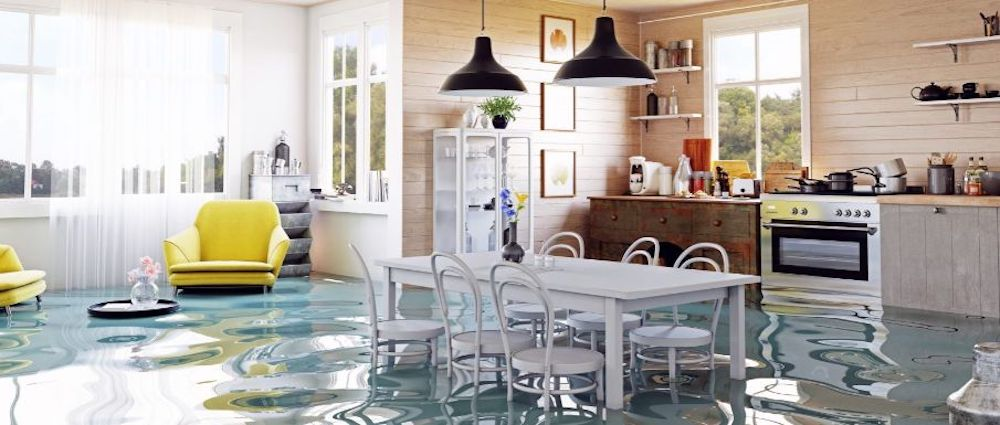 Water Damage Cleanup in Opelousas, LA (9139)